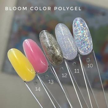 Полигель прозрачный с блестками №11 Bloom, 12 гр